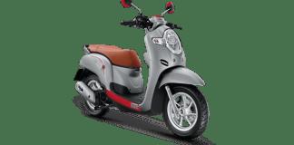 Honda Scoopy 2020 Grey