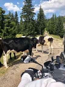 BMW MOTO CLUB GENEVE_sortie 1er août 18 9