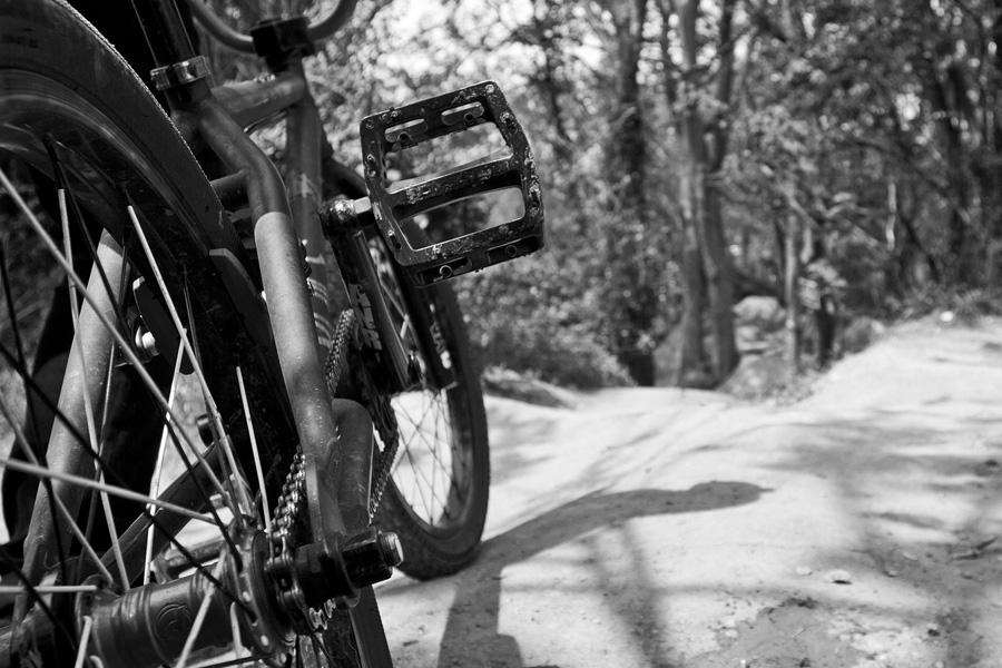 Trails_bikes