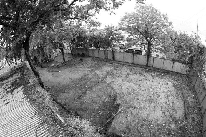 terrible-one-backyard-no-ramp