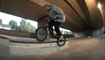 Animal Bikes Lord Leopold 2017 Video