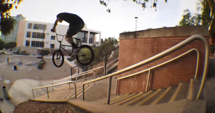 Animal Bikes – Hoder Gold Chain Promo