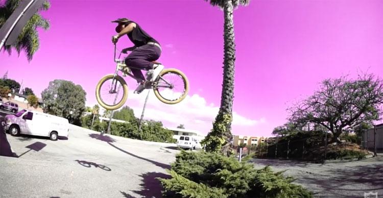S&M Bikes – Hobie Doan & Dan Norvell UFO Frame