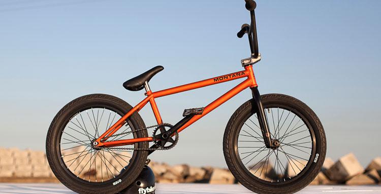 Flybikes - Stefan Lantschner Bike Check