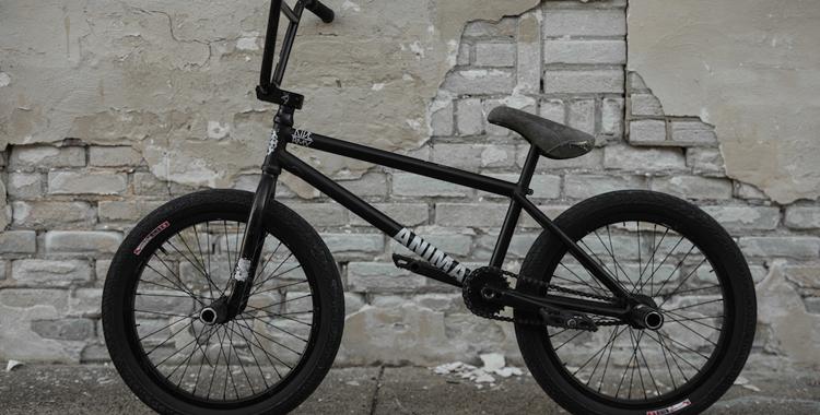 Animal Bikes – Johnny Raekes Bike Check
