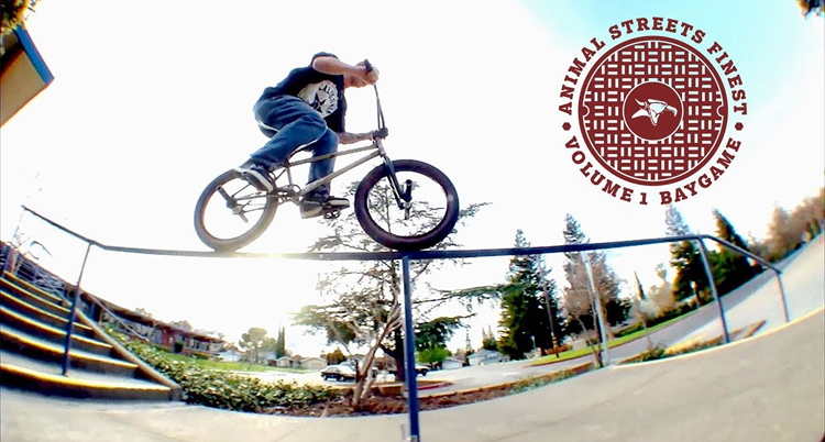 Animal Bikes Streets Finest Series Baygame BMX video