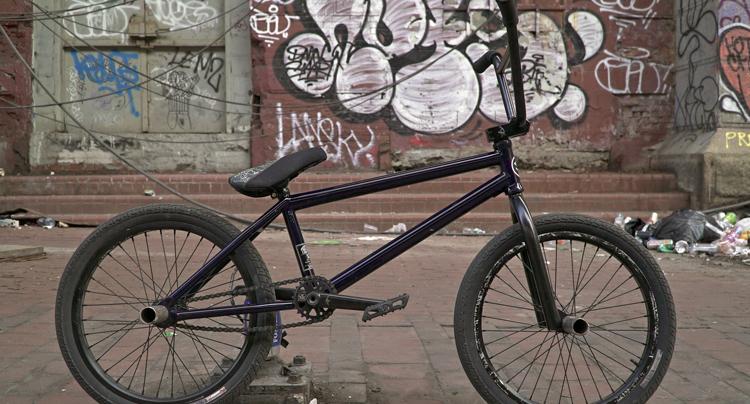 Animal Bikes Nobuhiro Pegy Masuda Bike Check
