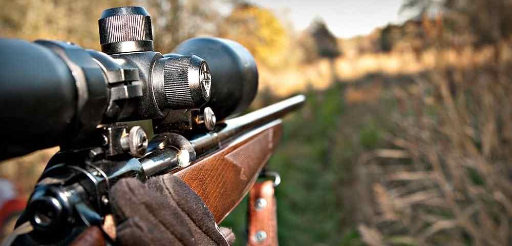Оптический прицел на винтовке - зачем использовать и как выбрать - Last Day Club