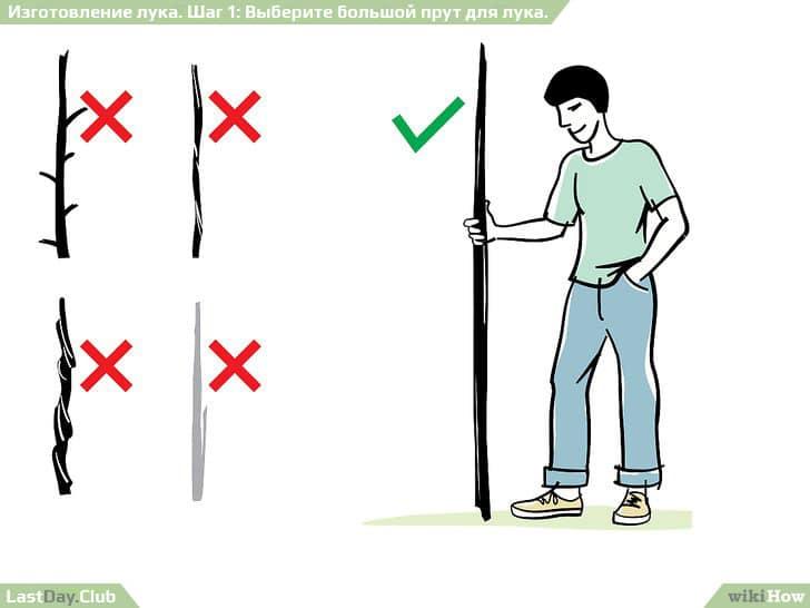 1 - Выберите большой прут для лука - Как сделать лук своими руками - Руководство по выживанию