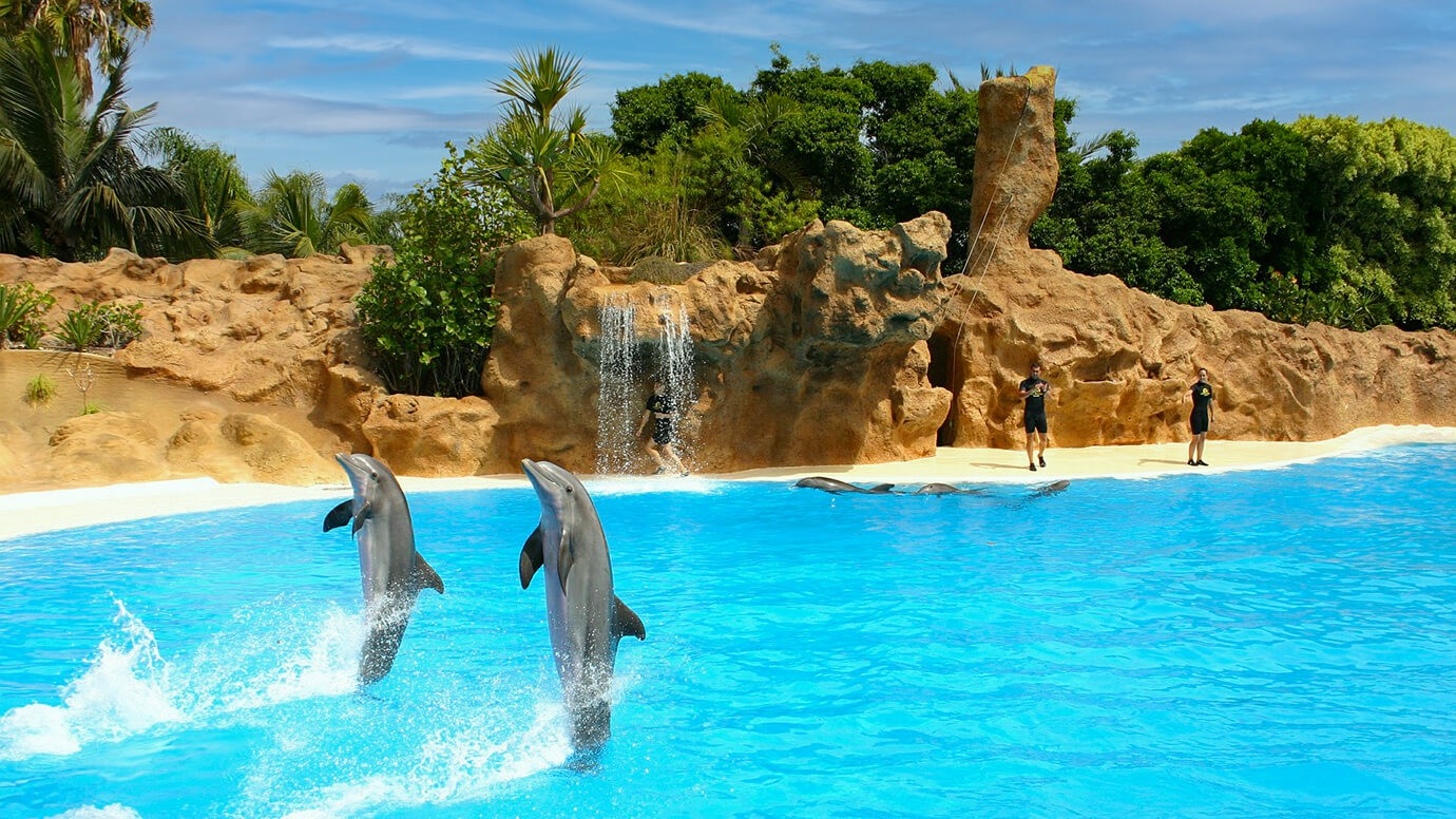 Zeedierenpark, Mundomar, Benidorm, Alicante, Casa Asombrosa