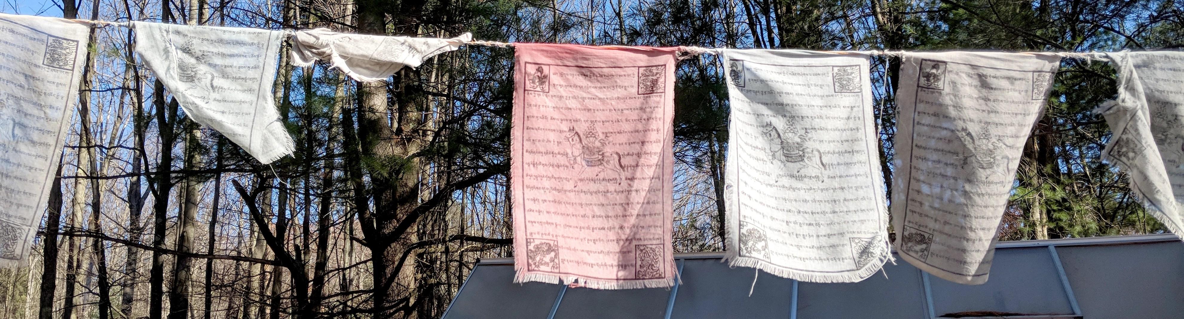 Prayer flags fly over the farm