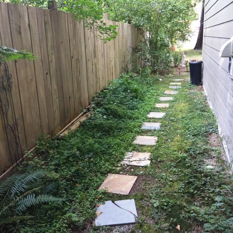 a stone path in a backyard