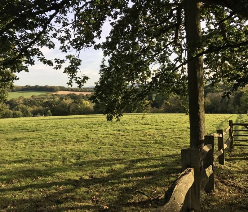 english countryside pasture near Benenden, England