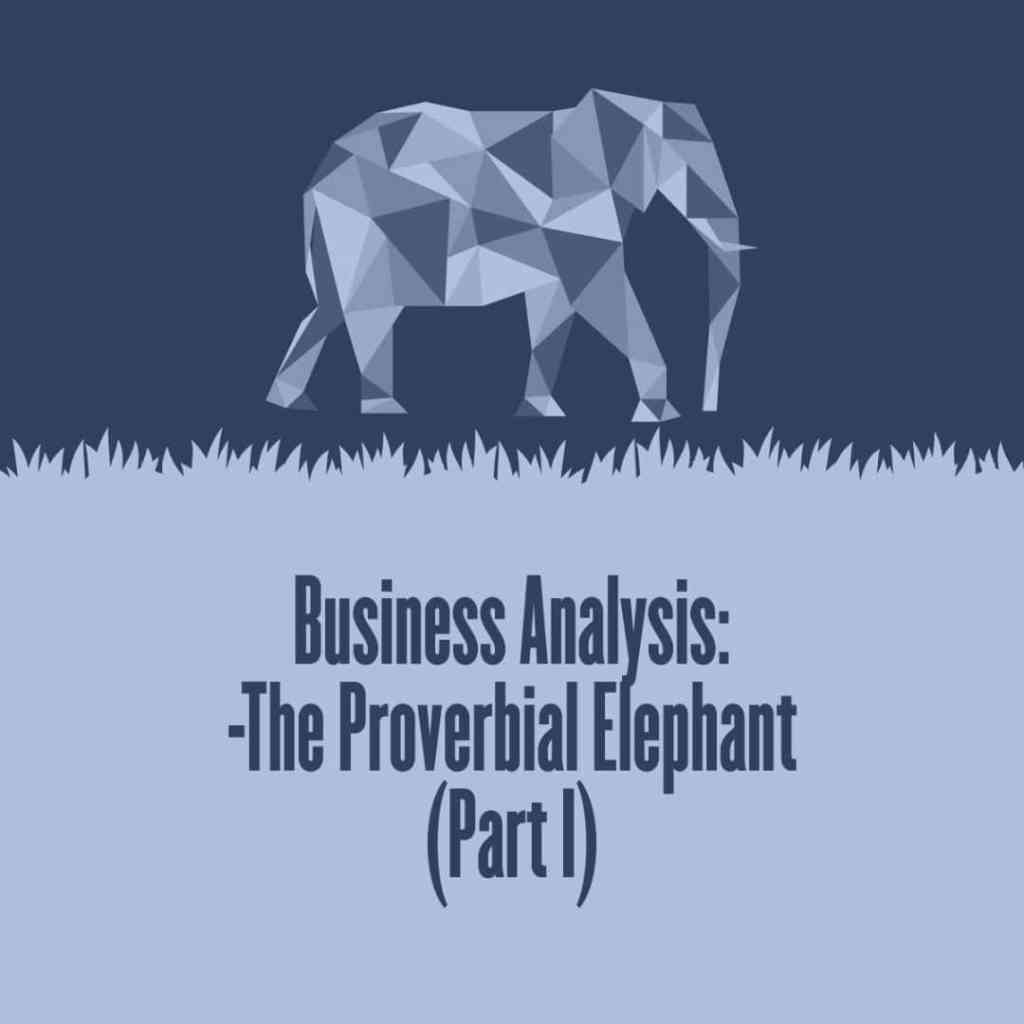 Business Analysis – The Proverbial Elephant (Part I)