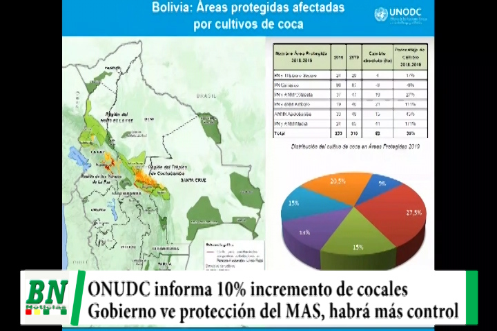 ONUDC informa que cocales crecieron 10% y parques fueron afectados, recomiendo mayor control y Gobierno ve protección del MAS