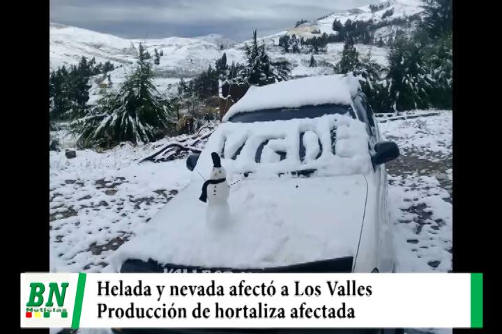 Helada y nevada en Los Valles Cruceños afecta a la producción de hortalizas