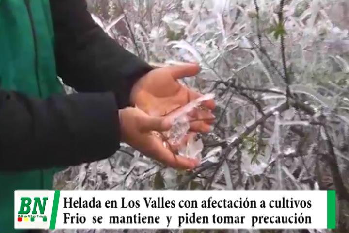 Bajo clima afecta a Los Valles Cruceños y esperan heladas, piden tomar precaución