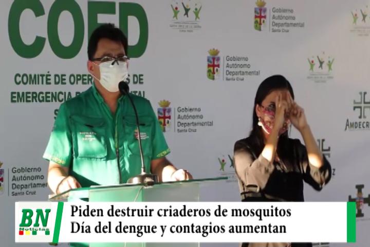 Piden destruir criaderos de mosquitos y realizarán acciones de control, recuerdan día del dengue