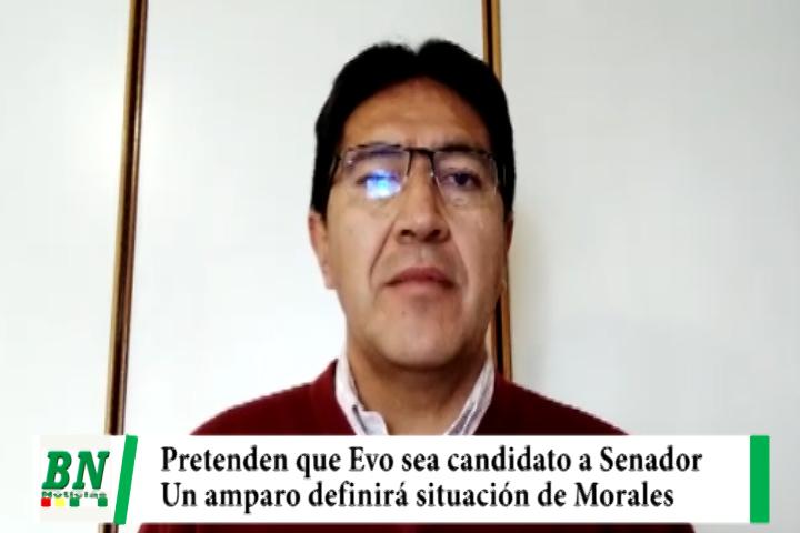 Denuncian que con un Amparo Constitucional buscan que Evo Morales sea candidato a Senador por el MAS