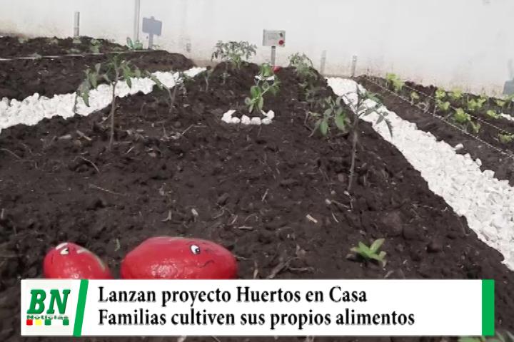 Gobernación lanza su proyecto Huertos en Casa, buscan que familias cultiven sus propios alimentos