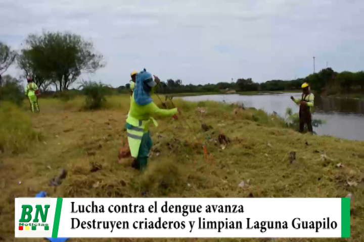 Lucha contra el dengue se mantiene con fumigación y destrucción de criaderos, limpian Laguna