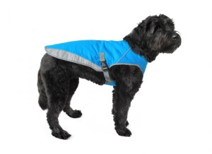 Barks and Recreation in Trail BC Canada Pooch Cooling Vest