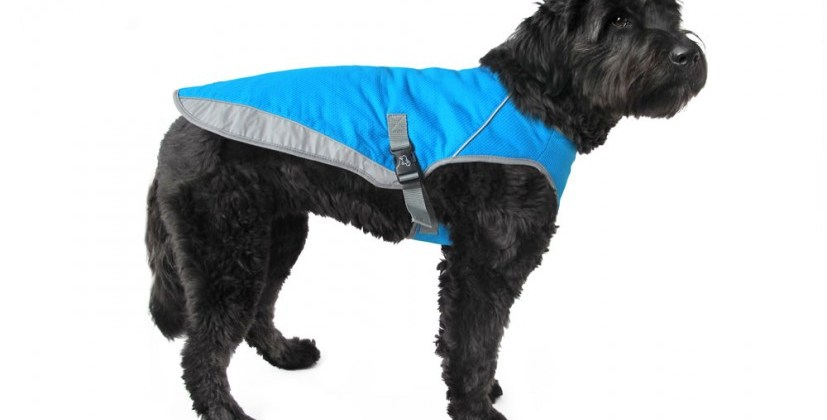 New Product 2015: Canada Pooch Chill Seeker: Cooling Vest