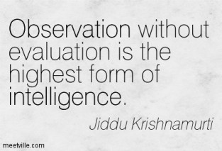 Quotation_Krishnamurti (12)