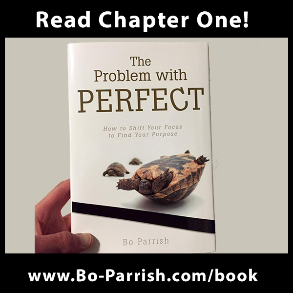 Read Chapter 1 of The Problem with Perfect