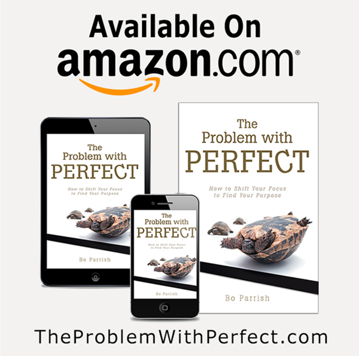 The Problem With Perfect on Amazon