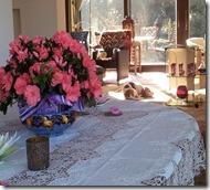 Slunicko am Valentinstag 2012