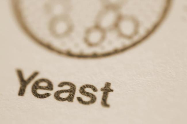 Macro shot of text and diagram: 'Yeast'.