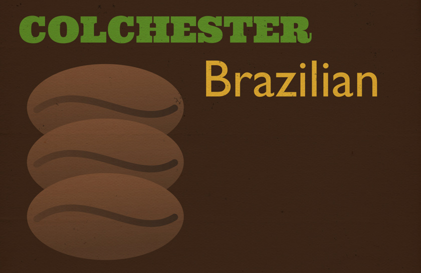 Illustration: Colchester Brazilian with coffee beans.