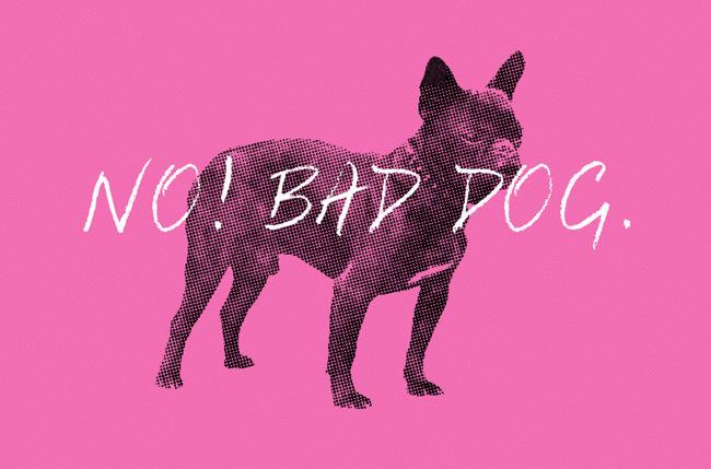"Illustration: ""No! Bad dog."""