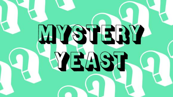 Mystery yeast.