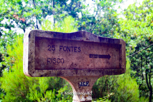 Levada das 25 Fontes, one of the things to do on Madeira