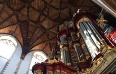 Wood ceiling and organ at St. Bavo