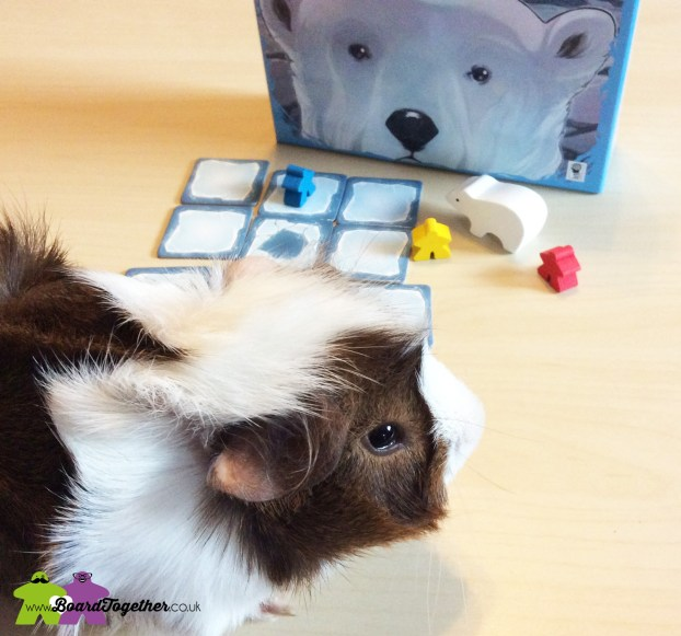 Thin Ice, refrence guineapig