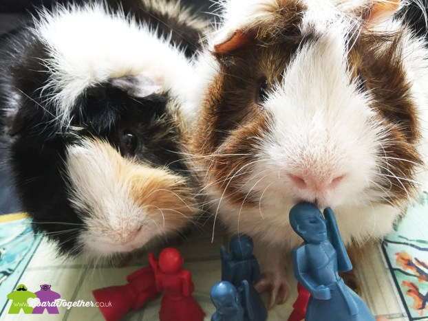 Guinea Pigs with Onitama