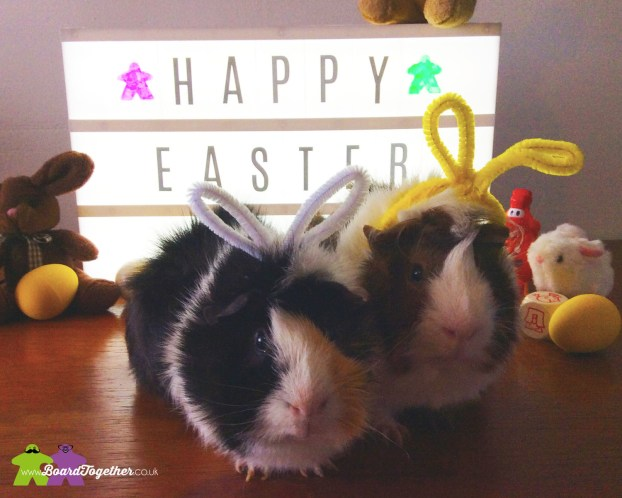 Easter Guinea Pigs 2017
