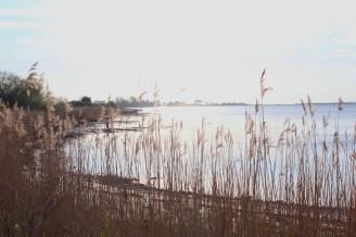 lyø Denmark island bay