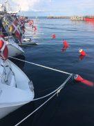 hornbaek buoys