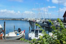 ven harbour