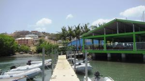 dinghy dock at Prickly Bay restaurant and for Budget Marine store