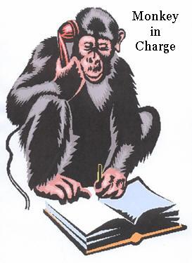 monkey273