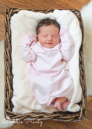 Newborn-baby-girl-basket-minneapolis-photographer