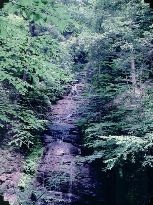 Filmore Glen State Park, Dalibarda Falls, Cayuga County, New York