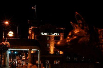 St. Charles - Fox Profile - Fox Rover - Hotel Baker © Bobbi Rose Photography
