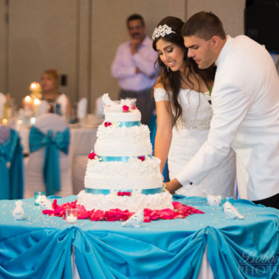 Cutting the Cake - Chicago Wedding Photographer - Ashyana Banquet Hall - Ashyana Banquets - © Bobbi Rose Photgraphy