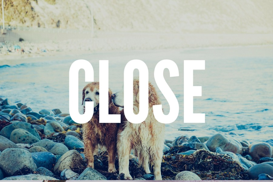 Close | BobbyShirley.com